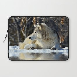 Wolf resting Laptop Sleeve