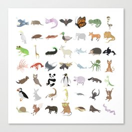 Animals Canvas Print