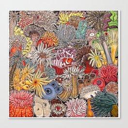 Clown fish and Sea anemones Canvas Print