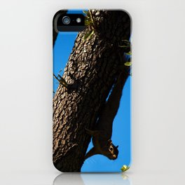 Sneaky Squirrel iPhone Case