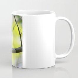 Hooded Warbler Mug