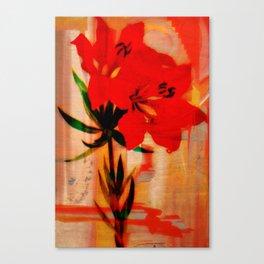 Hi-C Canvas Print