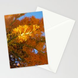 Nuytsia Stationery Cards