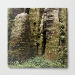 Natural green wall Metal Print