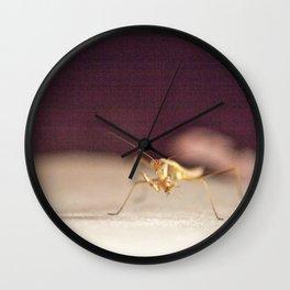 Gritty Mantis Wall Clock