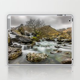 Lone Tree On The River Laptop & iPad Skin