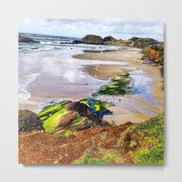 Coastline1 Metal Print