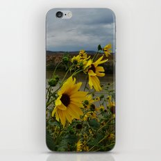 Yellow Flowers Before the Storm iPhone & iPod Skin