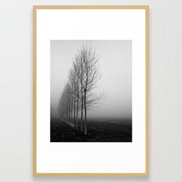 Tree line and fog Framed Art Print
