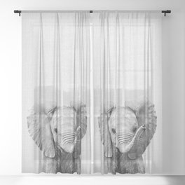 Baby Elephant - Black & White Sheer Curtain