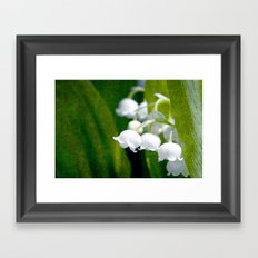 Lily of Peace Framed Art Print
