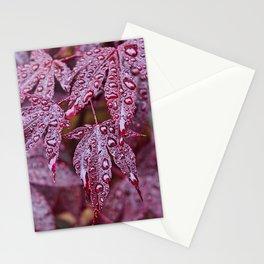 Japanese Acer palmatum Atropurpurea  Stationery Cards
