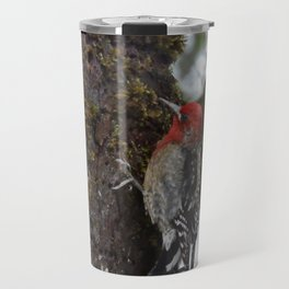 Red-Breasted Sapsucker in Christmas Snow Travel Mug