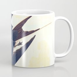 Sooty Tern John James Audubon Scientific Illustration Birds Of America Drawings Coffee Mug
