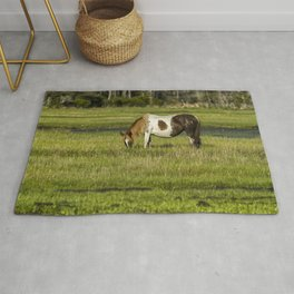 Pinto Mare with the Copper Colored Mane No. 1 - Chincoteague Ponies Assateague Horses Rug