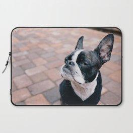 Bruce the Boston Terrier Pug Laptop Sleeve