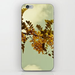 Nature Vintage iPhone Skin