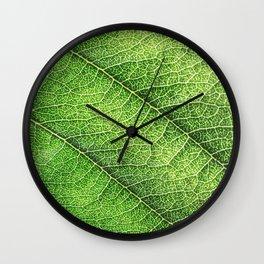 green Wall Clock