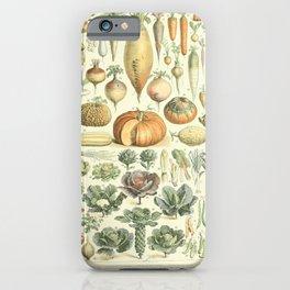 Adolphe Millot legume et plante potageres iPhone Case