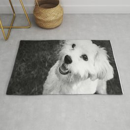 A Puppy Saying Hello Black and White Rug