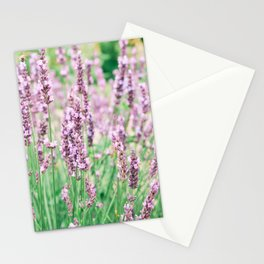 Beautiful Lavender Fields in France Stationery Cards