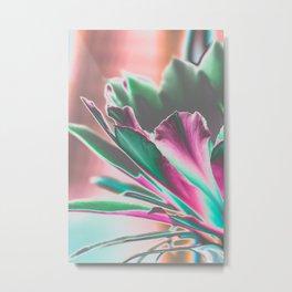 Cactus Bloom Dream I Metal Print