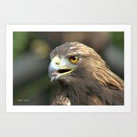 aigle  Art Print