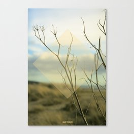 Summer 02 Canvas Print