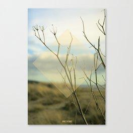 Summer 02 Canvas Print
