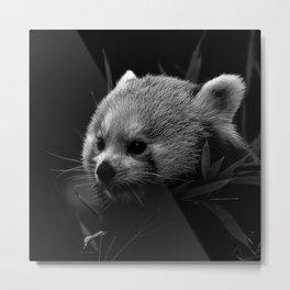 Awesome B&W red Panda Metal Print