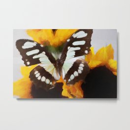 Summer Butterfly Metal Print