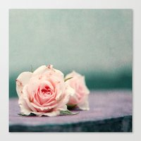roses Canvas Prints featuring roses by Claudia Drossert