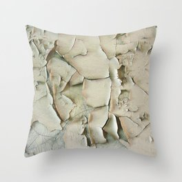 Dying wall Throw Pillow