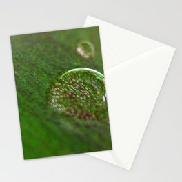 Nature's Magnifying Glass Stationery Cards