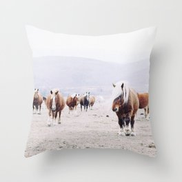 Wild horses - Portrait of beautiful Icelandic horses on field in winter with white snow Throw Pillow