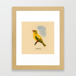 Cute Canary Painting Framed Art Print