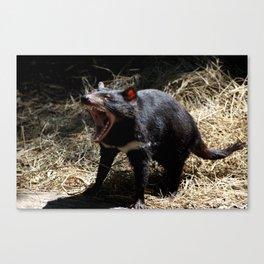 Devil's Roar Canvas Print