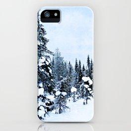 The magic of winter iPhone Case