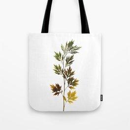 herbarium, natural Tote Bag