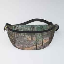 Winding Path Fanny Pack