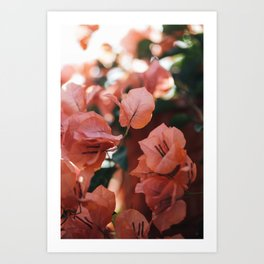 Bright Morning #6 Art Print