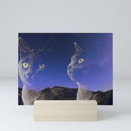 Cat and night sky Mini Art Print