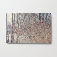 Swaying Grasses Metal Print