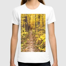 a path of yellow T-shirt