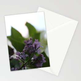 Flower Photography-Lilac Stationery Cards