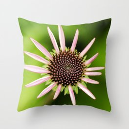 Coneflower Alternate Perspective Throw Pillow