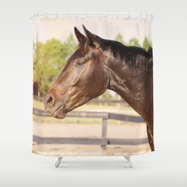 Bubba in Sunlight Shower Curtain