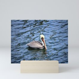 Floating Pelican Mini Art Print