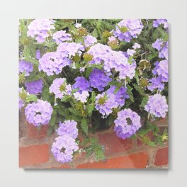Vebena in Purple Metal Print