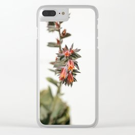 Summer Succulent #1 Clear iPhone Case